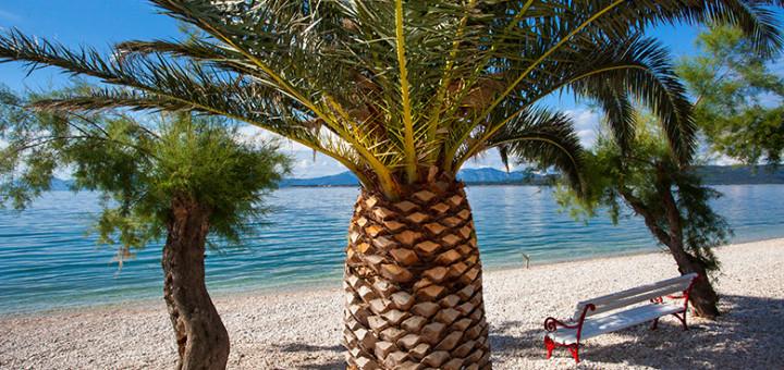 Živogošče Blato - pláž